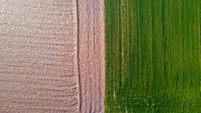 Natur und Landschaft: Vogelperspektive eines Feldes, Bearbeitung, grünes Gras, Landschaft, bewirtschaftend, Lizenzfreies Stockbild