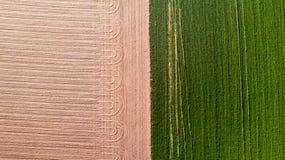 Natur und Landschaft: Vogelperspektive eines Feldes, Bearbeitung, grünes Gras, Landschaft, bewirtschaftend, Lizenzfreie Stockfotografie
