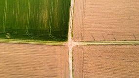 Natur und Landschaft: Vogelperspektive eines Feldes, Bearbeitung, grünes Gras, Landschaft, bewirtschaftend, Lizenzfreie Stockfotos