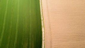 Natur und Landschaft: Vogelperspektive eines Feldes, Bearbeitung, grünes Gras, Landschaft, bewirtschaftend, Stockfotos