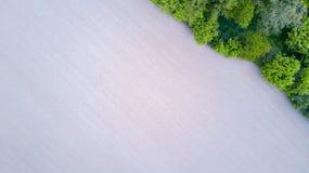 Natur und Landschaft: Vogelperspektive eines Feldes und der Bäume, Bearbeitung, grünes Gras, Landschaft, bewirtschaftend, Lizenzfreie Stockfotos
