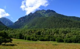 Natur und Schönheit auf den Nordsteigungen des größeren Kaukasus Lizenzfreie Stockfotos