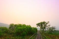 Natur und Sonnenaufgang Lizenzfreie Stockfotografie