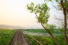Natur und Sonnenaufgang Lizenzfreie Stockfotos