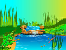 Natur und Wasserfall Stockfoto