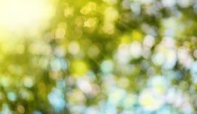 Natur verwischte Hintergrund mit bokeh und Sonnenstrahlen Lizenzfreies Stockbild