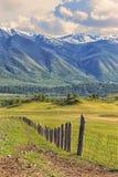 Natur von Altai Ein Zaun auf einer grünen Steigung Lizenzfreie Stockbilder