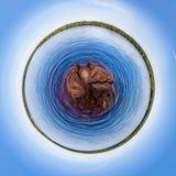 Natur von Karellia Russland Stockbilder