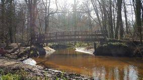 Natur-Wald mit schöner Brücke lizenzfreie stockfotografie