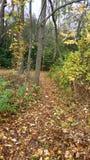 Natur-Wanderung Lizenzfreies Stockfoto