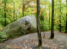 Natur-Weg in Ontario lizenzfreie stockbilder