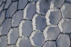 Natur-Zusammenfassung: Draht, der Frost bedeckt einzäunt und im Winter einfriert Stockfotografie