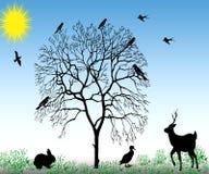 Natura. Zdjęcia Stock