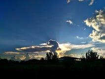 Natura zdjęcie royalty free