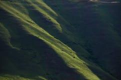 Natura abstrakt: Zieleni skłony piekło jar w wiośnie zdjęcie royalty free