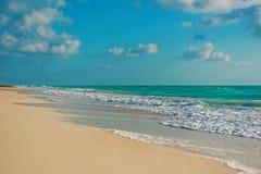 Natura, airone ed estate di paradiso sulla spiaggia tropicale fotografia stock libera da diritti