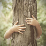 Natura amorosa fotografie stock libere da diritti