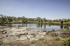 Natura basen Fotografia Royalty Free