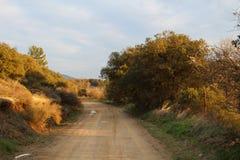 Natura behind i las Obrazy Stock
