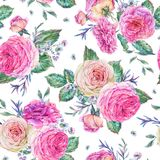 Natura bezszwowy wzór z różami ilustracja wektor