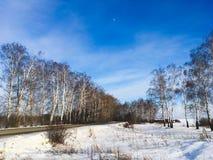 Natura, campi, foreste e cielo blu russi di inverno Fotografia Stock Libera da Diritti