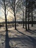 Natura, campi, foreste e cielo blu russi di inverno Immagini Stock Libere da Diritti