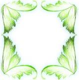 Natura che dipinge struttura floreale fotografia stock libera da diritti