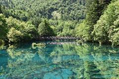 Natura in Cina Fotografia Stock