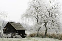 Natura congelata Immagini Stock