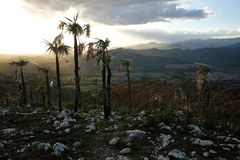 Natura cubana sbalorditiva Immagine Stock