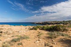 Natura Cypr zdjęcie royalty free