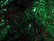 Natura del buon anno immagini stock libere da diritti