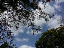 Natura del cielo Immagine Stock Libera da Diritti