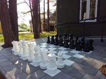Natura del gioco di scacchi Fotografie Stock