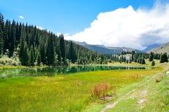 Natura del Kirghizistan, Gregory Gorge Fotografia Stock Libera da Diritti