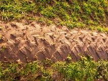 Natura del paesaggio di agricoltura del pavimento del suolo del percorso della pista di sporcizia del trattore Fotografie Stock Libere da Diritti