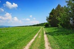 Natura del percorso di estate Immagine Stock