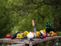 Natura del raccolto della verdura fresca all'aperto Stile di vita sano Fotografia Stock
