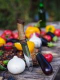 Natura del raccolto della verdura fresca all'aperto Stile di vita sano Fotografie Stock Libere da Diritti
