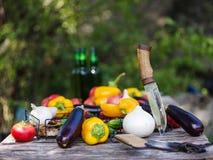 Natura del raccolto della verdura fresca all'aperto Stile di vita sano Immagini Stock Libere da Diritti