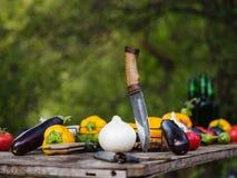 Natura del raccolto della verdura fresca all'aperto Stile di vita sano Fotografia Stock Libera da Diritti