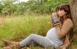 Natura del tè della donna Immagini Stock Libere da Diritti