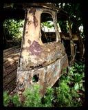 Natura dell'automobile Immagine Stock