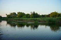 Natura dell'Ucraina fotografia stock libera da diritti