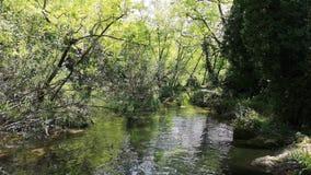 Natura della cascata di energia di energia idroelettrica di flusso del fiume video d archivio
