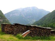 Natura della legna da ardere di accensione di catasta di legna Fotografie Stock Libere da Diritti