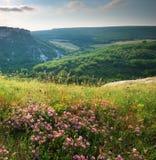 Natura della montagna della primavera Fotografie Stock