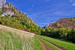Natura della montagna - pista al canyon Fotografie Stock
