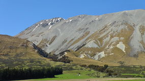 Natura della Nuova Zelanda Immagine Stock Libera da Diritti