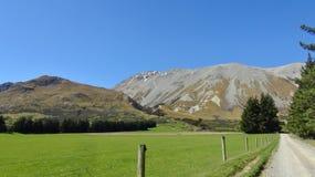 Natura della Nuova Zelanda Immagine Stock